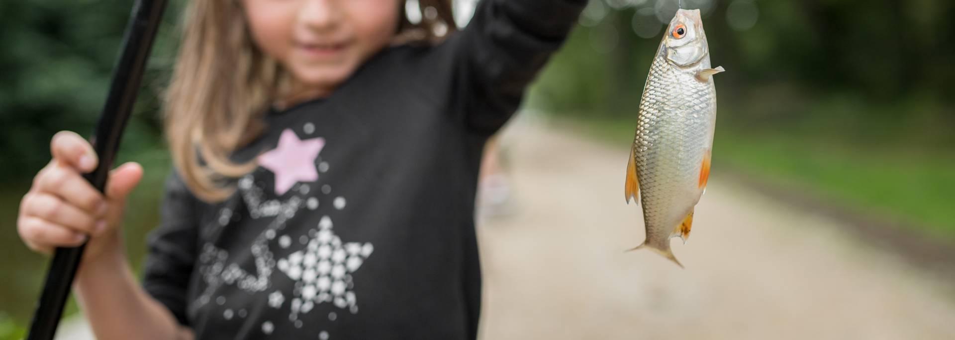 Pêche à Jugon-les-Lacs