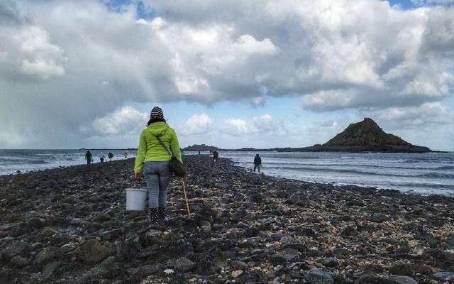 Pêche à pied à l'îlot du Verdelet©A. Voka