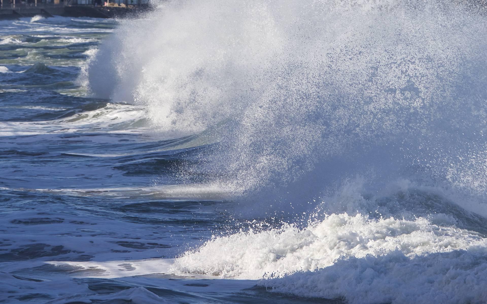 Grandes marées Pléneuf-Val-André ©Didier Thomas
