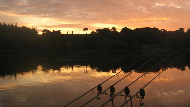 pêche à la carpe à Jugon