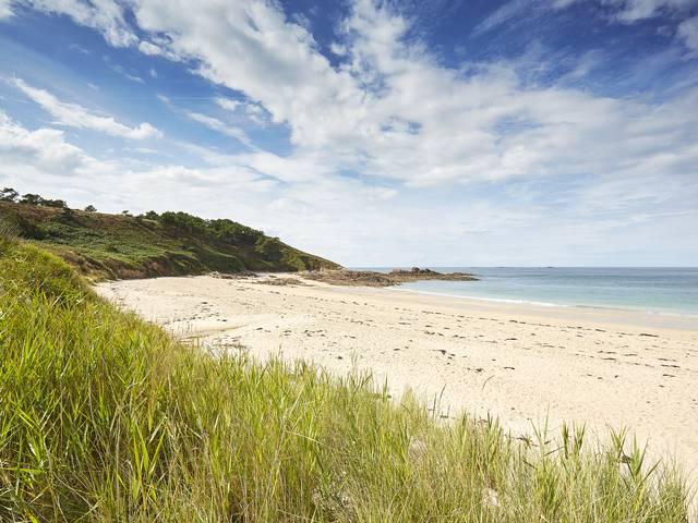 Wild beach - Erquy