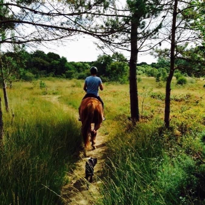 Promenade à cheval à Erquy